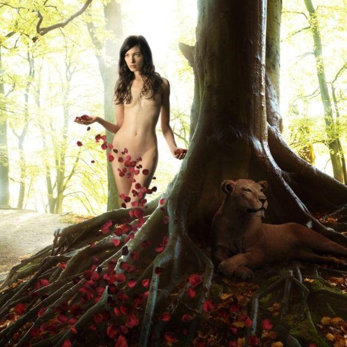 Таинственный лес. Автор фото: Рональд Шметс (Ronald Schmets).